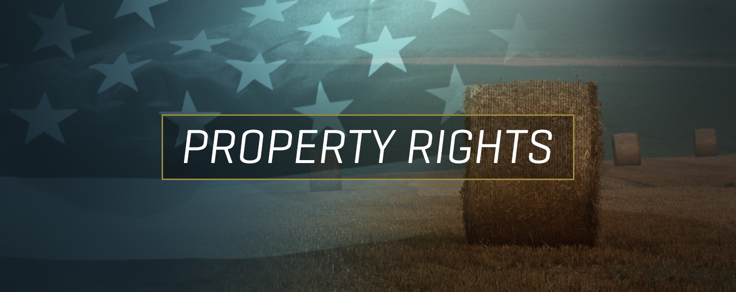 Security of property rights